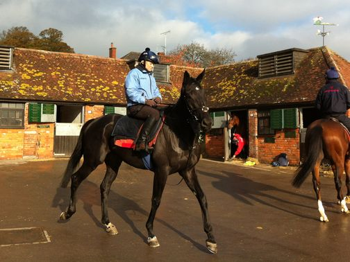 Alex with Black Thunder at Manor Farm Stables