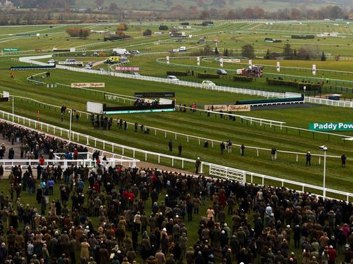 Cheltenham is one of the Jockey Club's racecourses