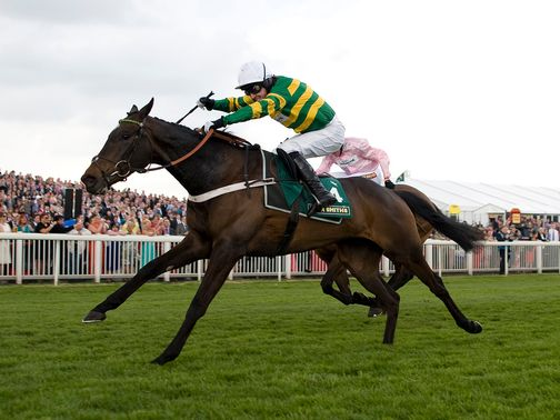 Darlan: Needs to prove himself a Champion Hurdle contender