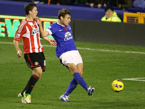 Nikica Jelavic scored the winning goal