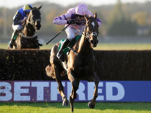 Silviniaco Conti: Leads a strong Nicholls entry