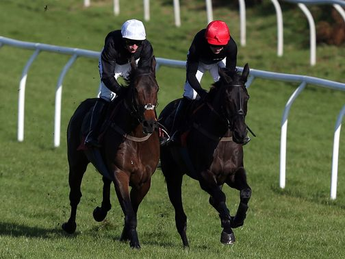 Big Buck&#39;s (right): Works at Exeter on Wednesday