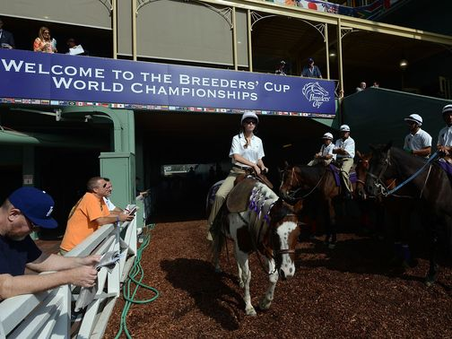 It's a big night of action at the Breeders' Cup