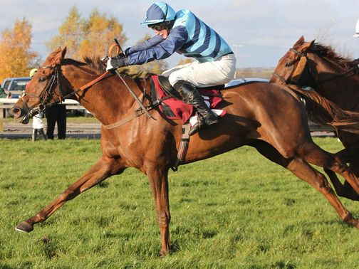 Kauto Stone: Back to the drawing board