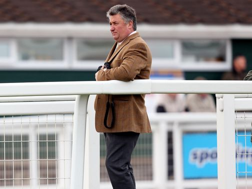 Paul Nicholls saddles the promising Fox Run