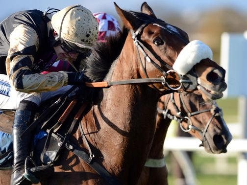Tidal Bay: Handed top weight for the Grand National