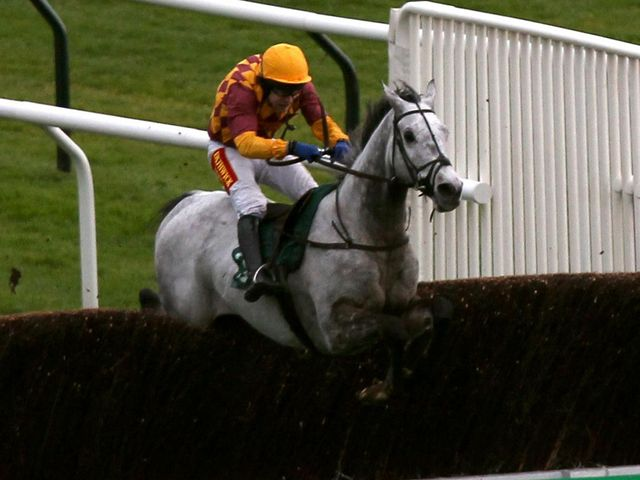 Dynaste: Impressed at Cheltenham on his chasing bow