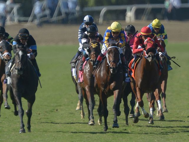Mizdirection (left) gets up to win the Turf Sprint