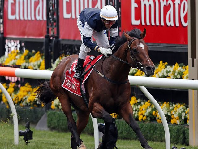 Green Moon: Won the Melbourne Cup under Brett Prebble