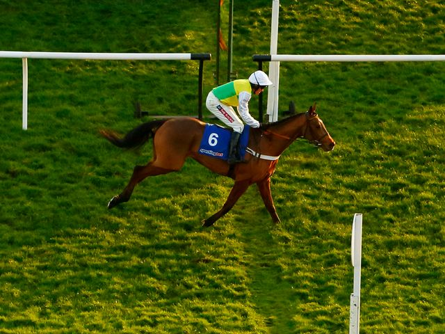 Lyvius: Makes winning reappearance at Newbury