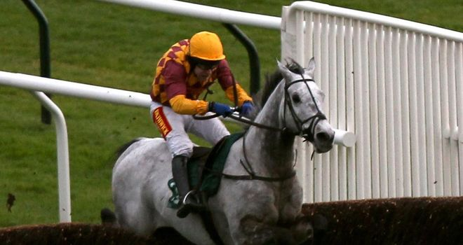 Dynaste: Very impressive chasing debut at Cheltenham in the Steel Plate And Sections Novices' Chase