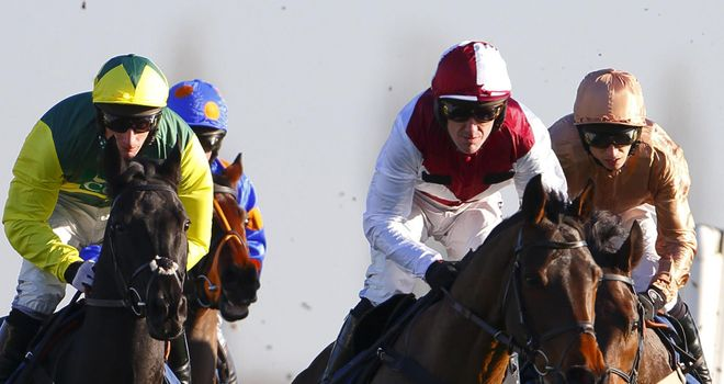 Meganisi (centre): Put his experience to good use in the Sportingbet Novices' Hurdle