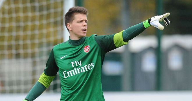 Wojciech Szczesny: Has urged Arsenal fans to keep the faith after Saturday's defeat to Swansea