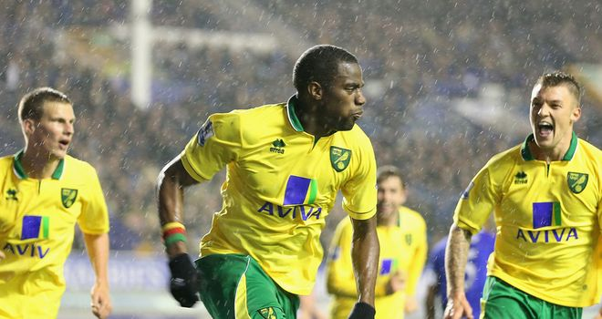 Sebastien Bassong: Equalised in Norwich's 1-1 draw with Everton