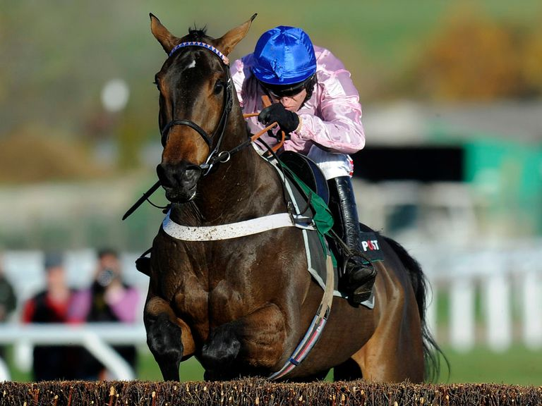 Captain Conan: Backed to win at Sandown