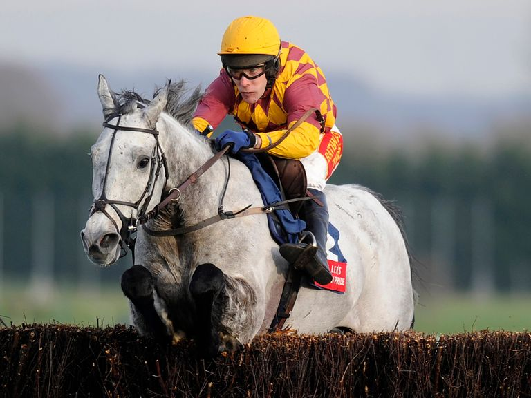 Dynaste: Cheltenham target unknown as yet