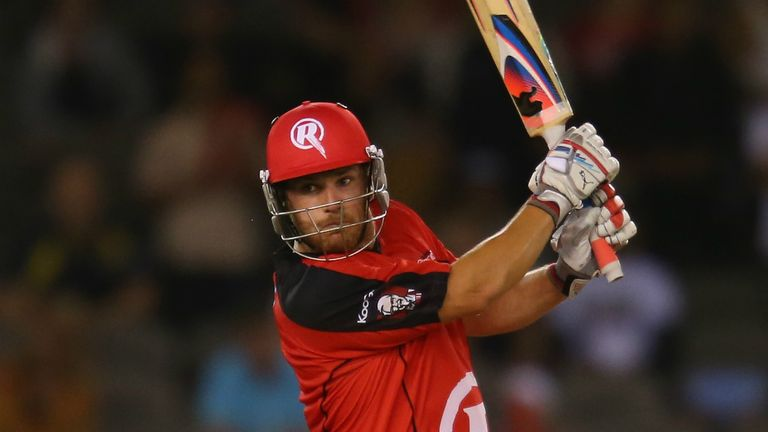 Aaron Finch: has rattled up 221 runs for the Renegades so far in four knocks