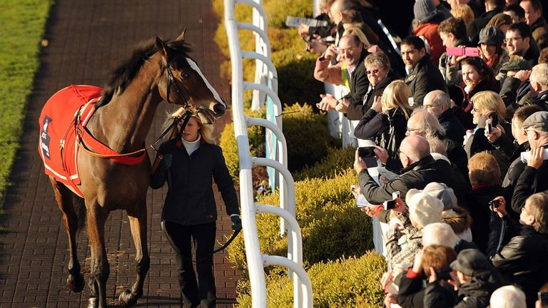 Kauto Star: Impressed his new rider as he begins new life