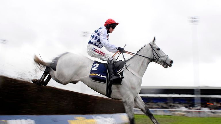 Simonsig: Ruled out of the Betfair Super Saturday Chase at Newbury