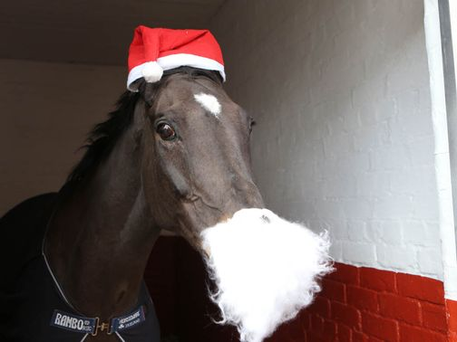 Cloudy Lane gets into the Christmas spirit