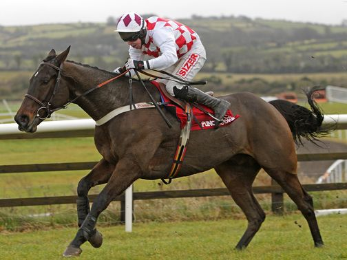 Flemenstar: Is being aimed at the Cheltenham Gold Cup