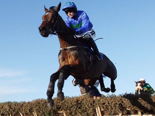 Hurricane Fly: Right in the mix for the Champion Hurdle again