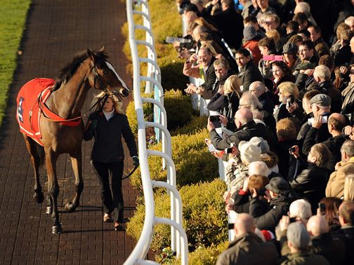 Sandown racegoers say hello to Kauto Star last month