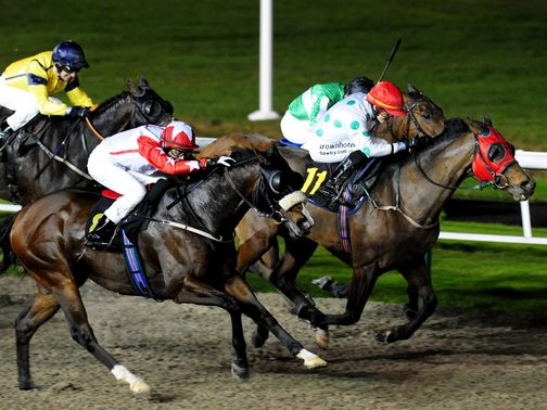 Friday's best bet runs at Wolverhampton