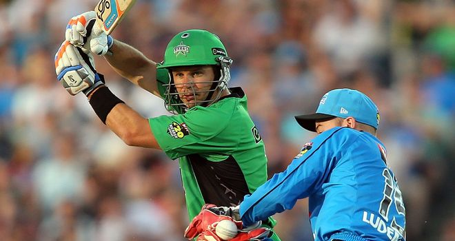 Brad Hodge: Blasted 88 from just 58 balls for Melbourne Stars