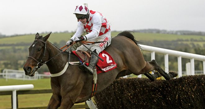 Flemenstar: Set to miss Cheltenham