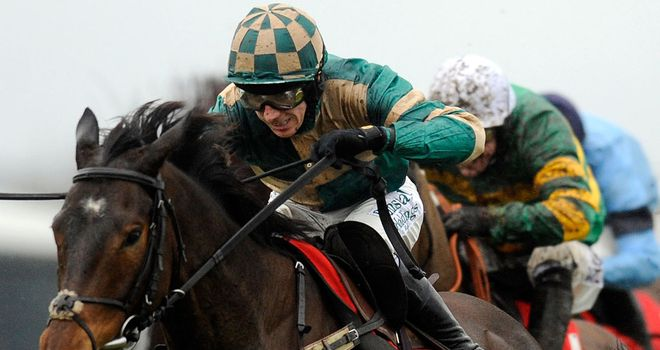 Module: Set to run in the Jewson Novices' Chase