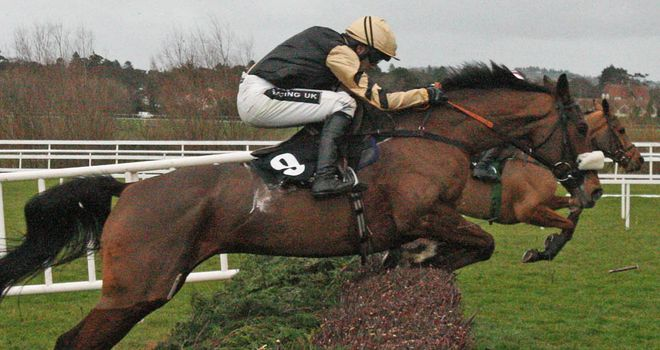 Tidal Bay: Ruled out of the John Smith's Grand National