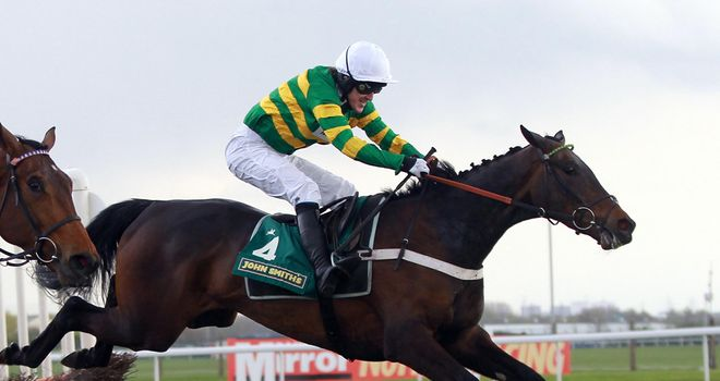 Darlan: Out to stake his Champion Hurdle claims at Kempton