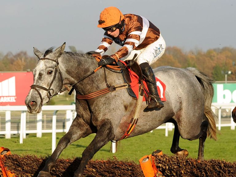 Kentford Grey Lady: Can win over fences at Exeter