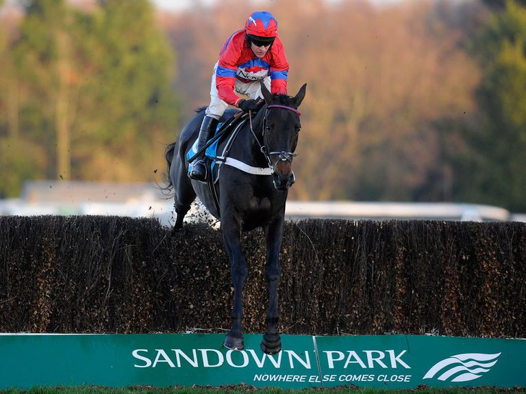 Sprinter Sacre: Heads the Champion Chase entries