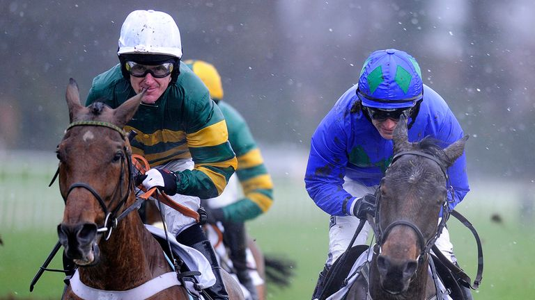Binocular (left) ultimately proved no match for Hurricane Fly on Sunday