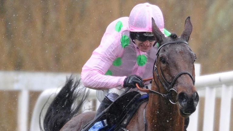 Pont Alexandre: Alex's pick for the Neptune Novices' Hurdle on Wednesday