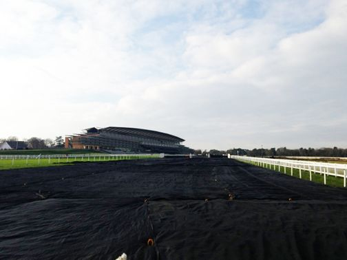 Ascot: Under the covers but now snow is forecast