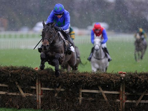 Hurricane Fly: Cut above his rivals in Irish Champion Hurdle