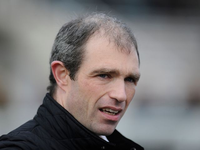 Seamus Durack: Saddles Litigant