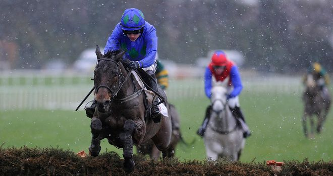 Hurricane Fly: Runaway winner of the Irish Champion Hurdle