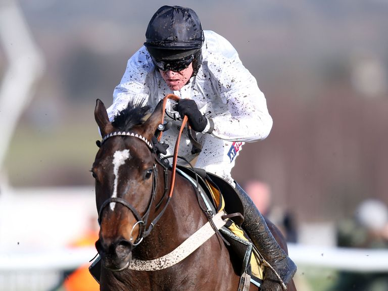 Rolling Star: The best juvenile hurdler we've seen this season