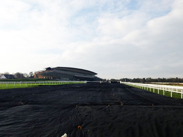 Ascot: As it looked on Tuesday, with covers down
