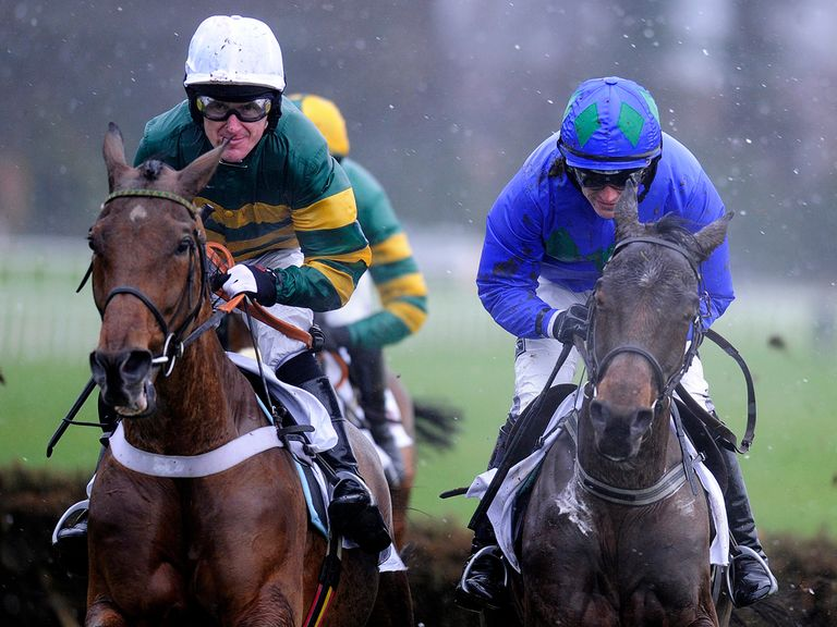 Binocular: Unlikely to run at Wincanton on testing ground
