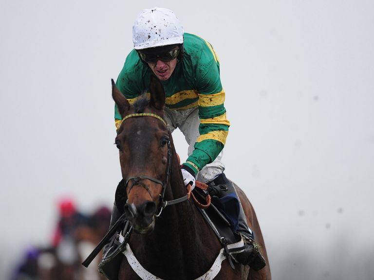 My Tent Or Yours: Favourite for the Betfair Hurdle