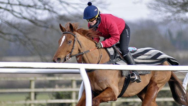 Alex continues her Cheltenham preparations at Richard Fahey's Yorkshire stables
