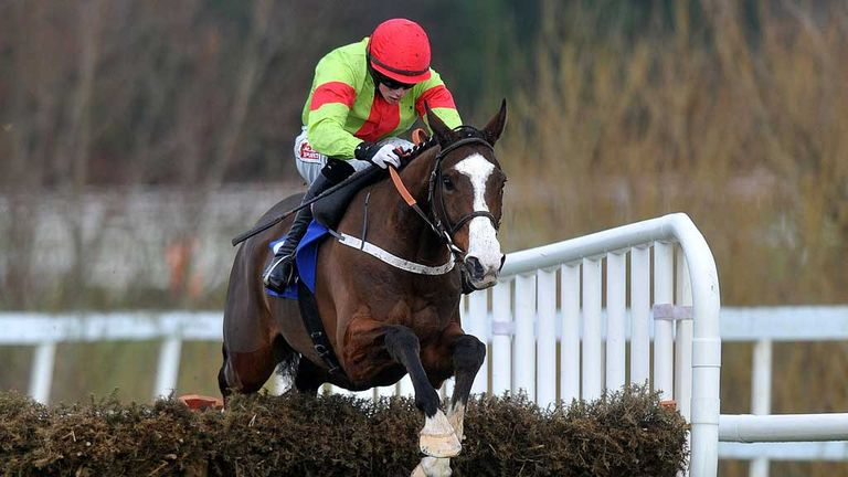 Dessie Hughes has an exciting prospect in his yard in the form of Our Conor
