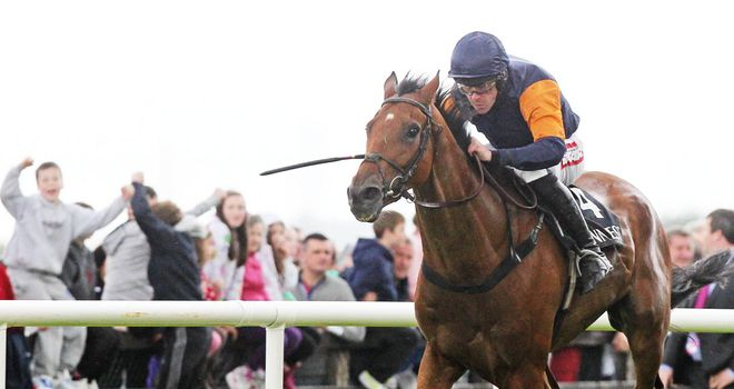 Rebel Fitz: Still on target for Cheltenham