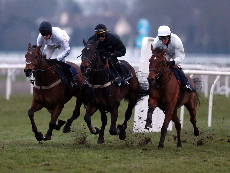 Bobs Worth, Long Run and Binocular in a spin after racing