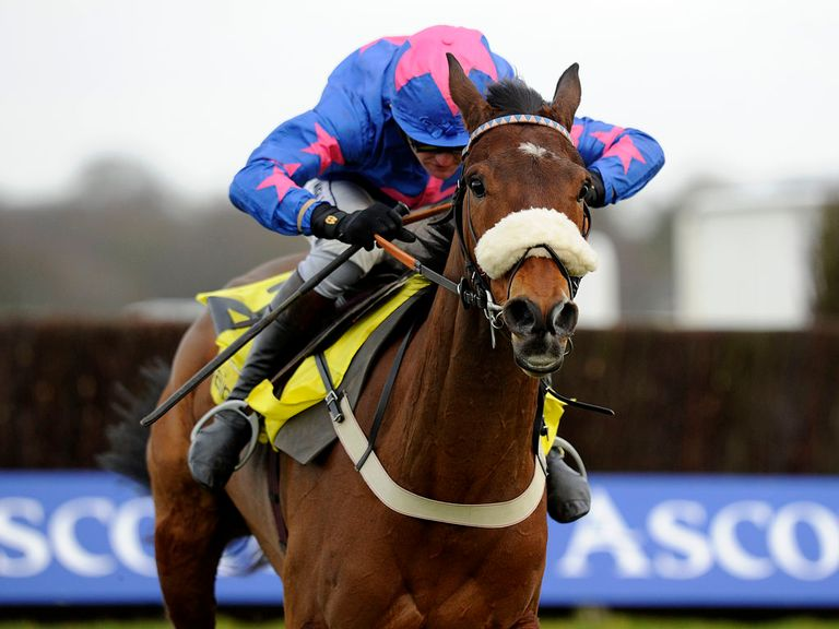 Cue Card: Haydock next on the agenda